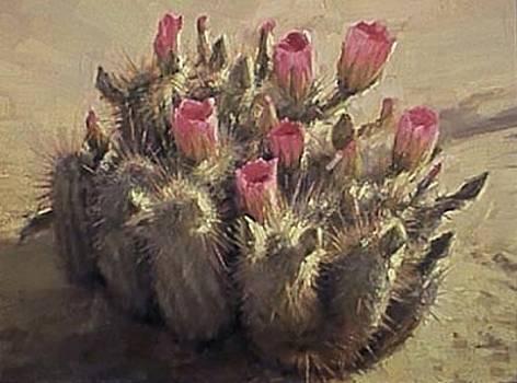Tuscon Cactus by Chuck Marshall