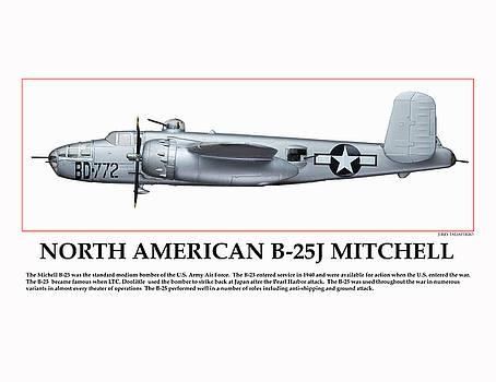 Tuskegee Aviator Bomber by Jerry Taliaferro