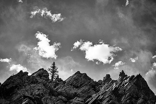 Mary Lee Dereske - Tusas Canyon New Mexico