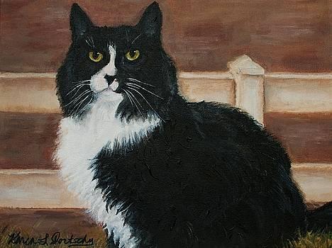 Butterball the Tuxedo Cat by Karen Dortschy