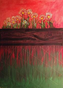 Twelve Daises In Window Box by Edward Longo