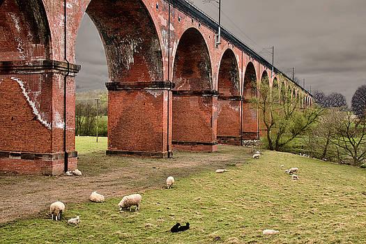 Twemlow viaduct by Susan Tinsley