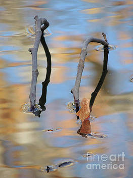 Twig Bridge by Robert Ball