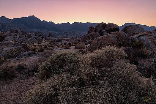 Twilight Descends by Stuart Gordon