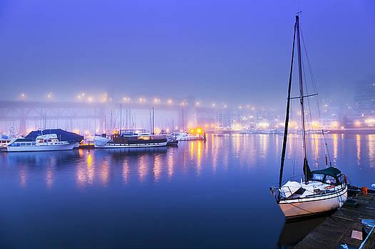 Twilight Fog by Lorna Rande