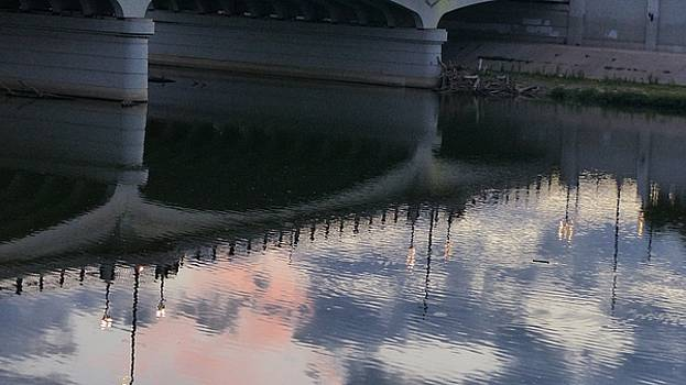 Twilight Lamp Post Reflection by Barkley Simpson