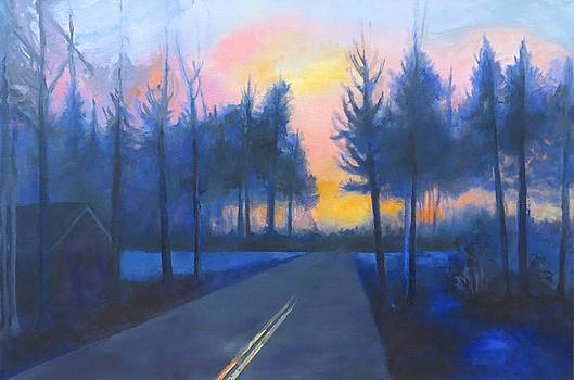 Twilight on Fifty by Terri Messinger