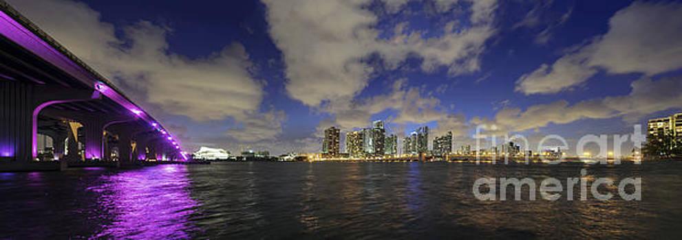Lynn Palmer - Twilight over Midtown Miami