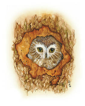 Twilight Owl by Donna Genovese