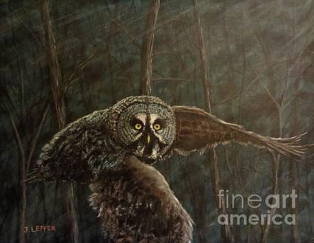Twilight Owl of Ga' Hooole by Jack Lepper