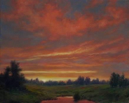 Twilight Skies by Barry DeBaun