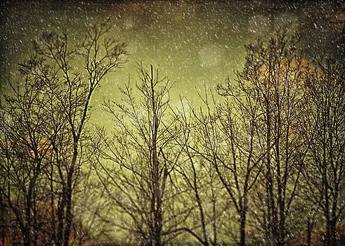Lisa Russo - Twilight Snow