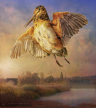 Twilight Woodcock Rising by R christopher Vest
