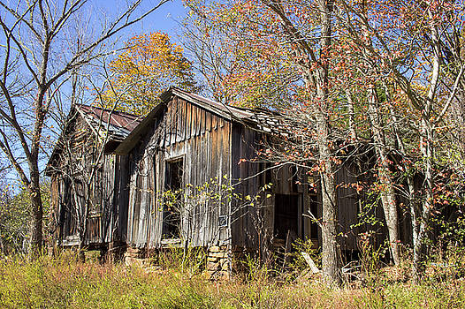 Twin Cabins by Tammy Chesney