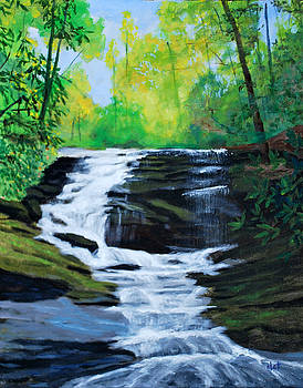 Twin Falls by David Carson Taylor