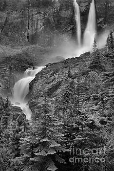 Adam Jewell - Twin Falls Portrait Black And White