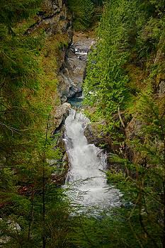 Twin Falls Snoqualmie River Washington by Stacey Lynn Payne