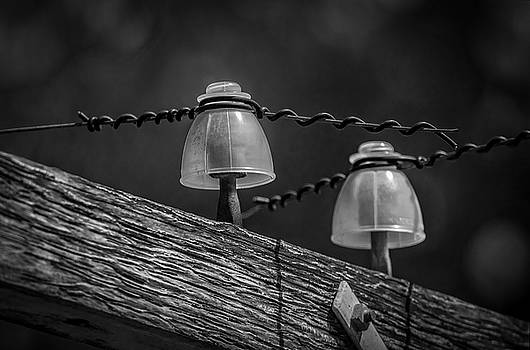 Twin Insulators by Ray Congrove