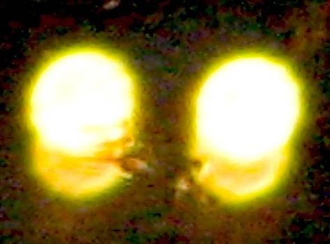 Stephen Hawks - Twin Lights