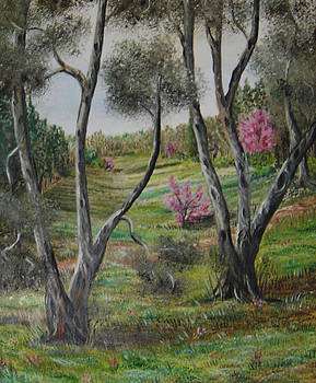 Twins - olive trees by Anna Witkowska