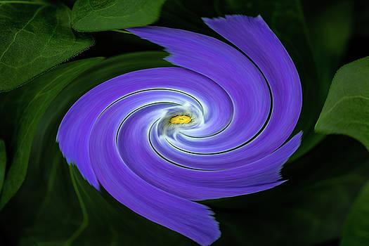 Rick Strobaugh - Twirling Flower Pedals