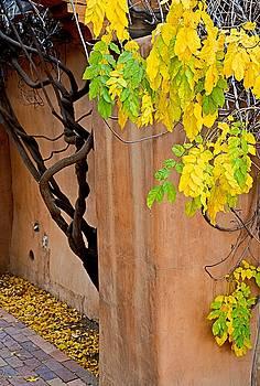 Robert Meyers-Lussier - Twisted Autumn Leaves CV