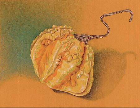 Christel Huttar - Twisted Gourd
