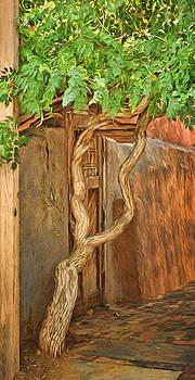 Twisted Tree - Wall by Nikolyn McDonald