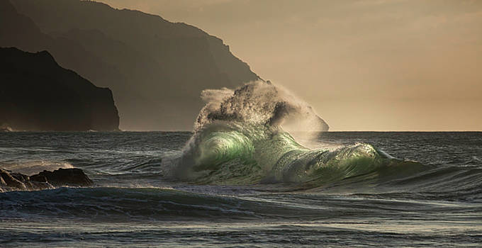 Twisted Wave by Roger Mullenhour