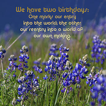 Two Birthdays by TB Sojka