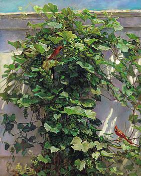 Two Cardinals On The Vine Tree by Svitozar Nenyuk
