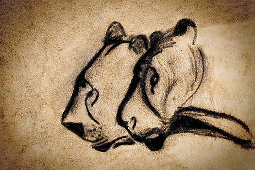 Weston Westmoreland - two chauvet cave lions