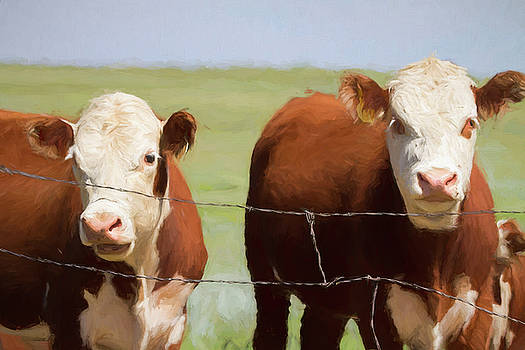 Two Cows Digital Art by James BO Insogna