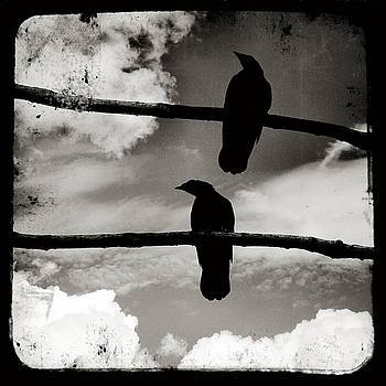 Two Crows And Clouds In Black And White by Gothicrow Images