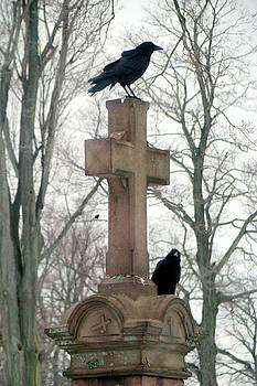 Two Curious Gothic Crows In A Graveyard  by Gothicrow Images
