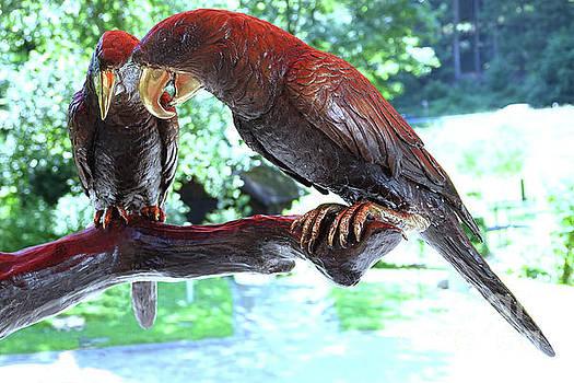 Two Eagles - Ein Adler-Paar by Eva-Maria Di Bella