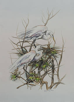 Two Egrets in a Tree by Laurie Tietjen