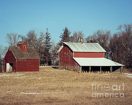 Two For One On The Farm by Kathy M Krause