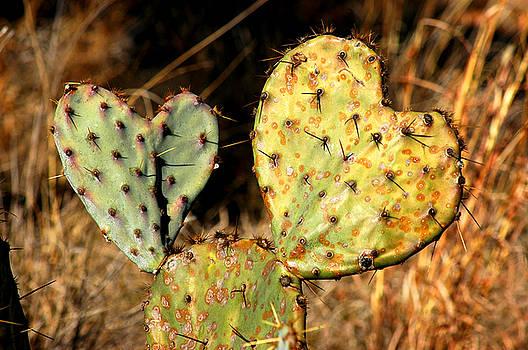 Two Hearts by Robert Anschutz