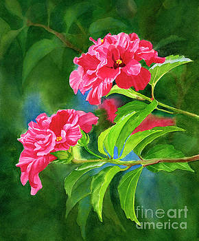 Two Hibiscus Rosa Sinensis Blossoms with Background by Sharon Freeman