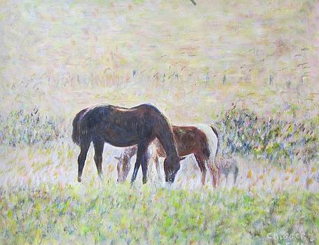 Two Horses in the Mist by Glenda Crigger