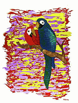 Two Macaws by Andrew Petras