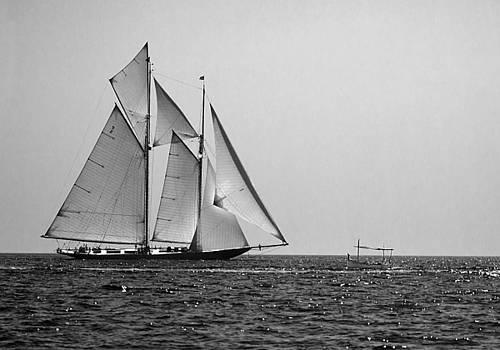 Pedro Cardona Llambias - Two mast vessel and a little boat 1