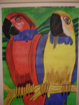 Two Parrots by Rosario Gerena