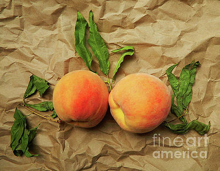 Two peaches. Conversation. by Anna Sofia