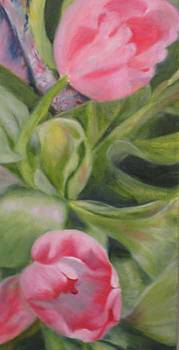 Two Pink Tulips by Selma Cooper