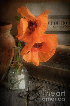 Two Poppies in a Vase by Ann Garrett