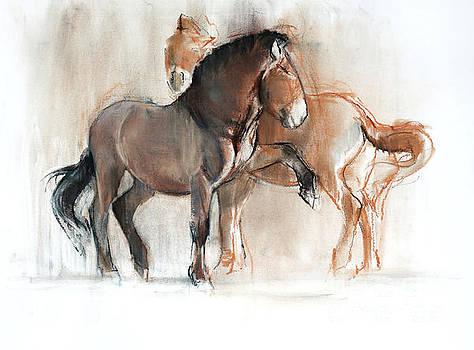 Two Przewalski by Mark Adlington