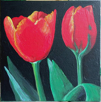 Two Red Tulips by Grace Matthews