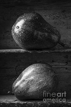 Edward Fielding - Two Ripe Pears in Black and White